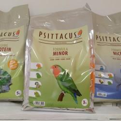Minor 3 kg Psittacus
